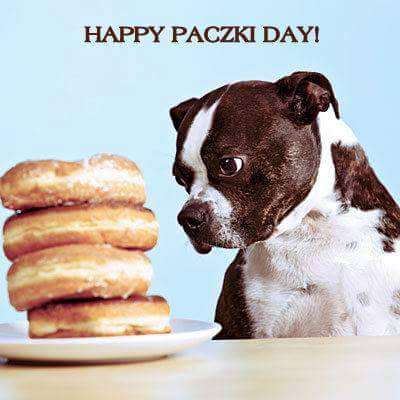 Paczki Day Wishes Images