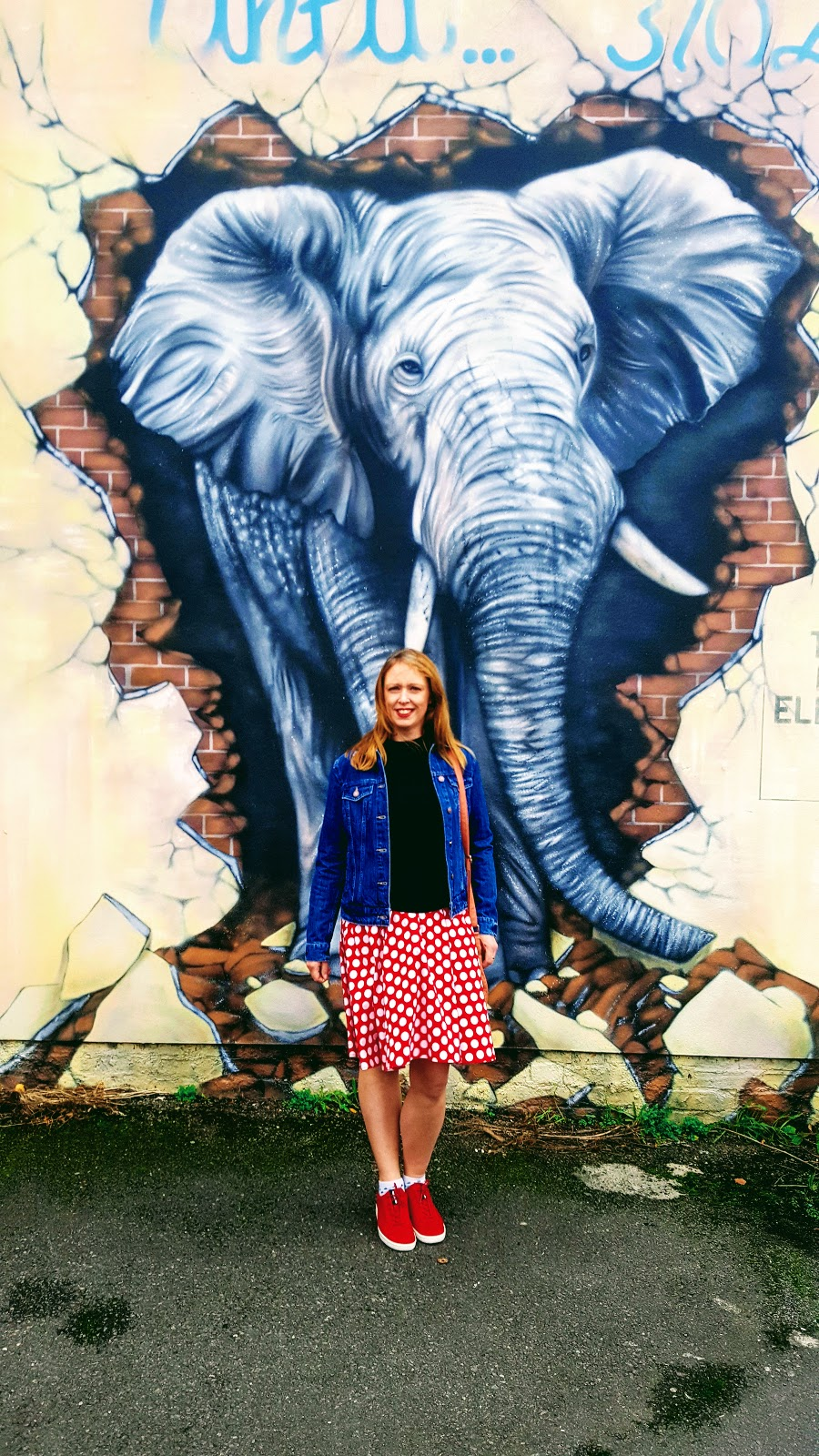 Elephant Street Art Loughborough & My Favourite Polka Dot Dress