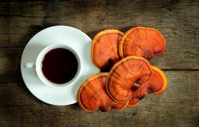 Ganoderma mushroom company in Puducherry