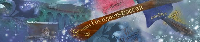 banner by starship2016@Shadowplay