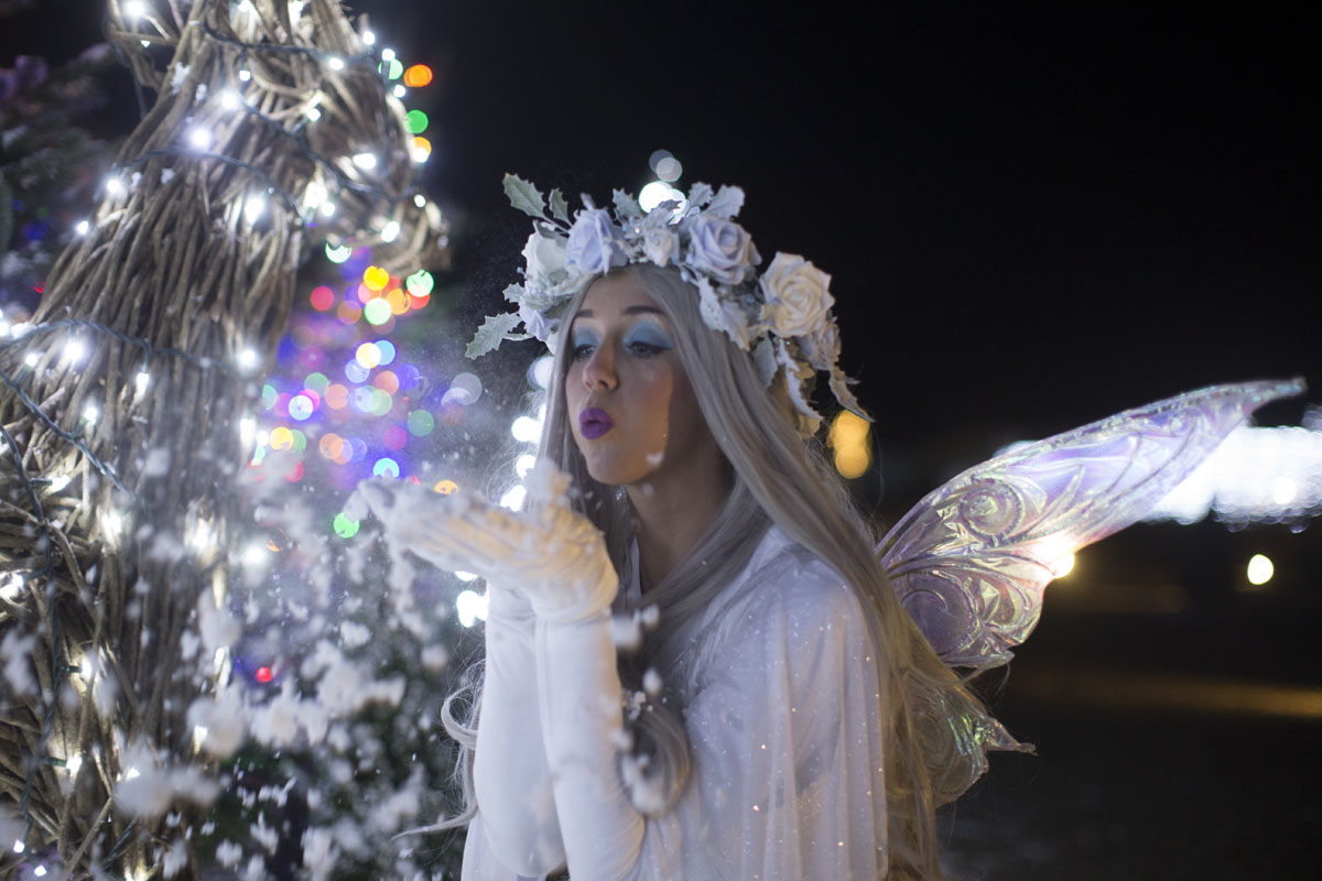 Christmas at Wynyard Hall - A guide to what's on in December including Festive Afternoon Tea and a Winter Wonderland Christmas Light Show in the gardens.  - Ice Queen