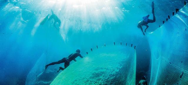 Pescadores en Magadascar.PNUD/Garth Cripps