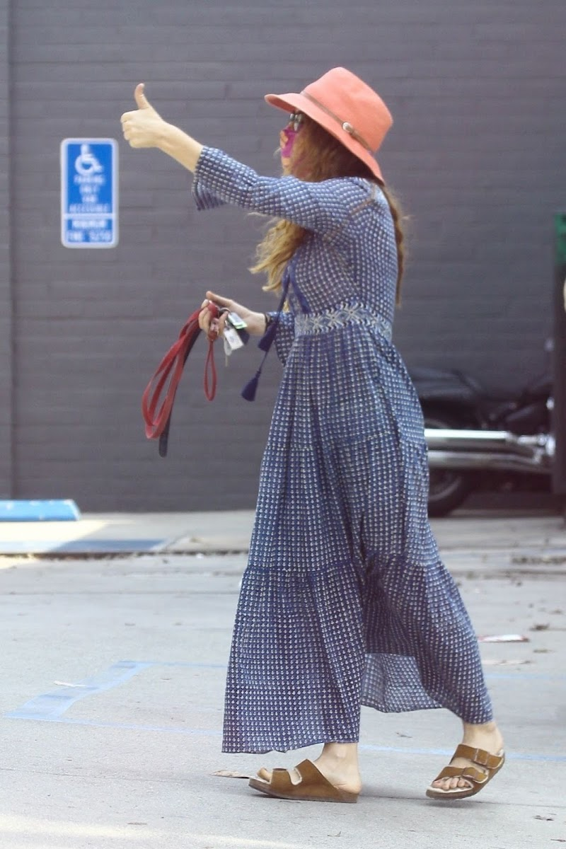 Isla Fisher Clicked Outside with Her Dog in West Hollywood 21 Aug -2020