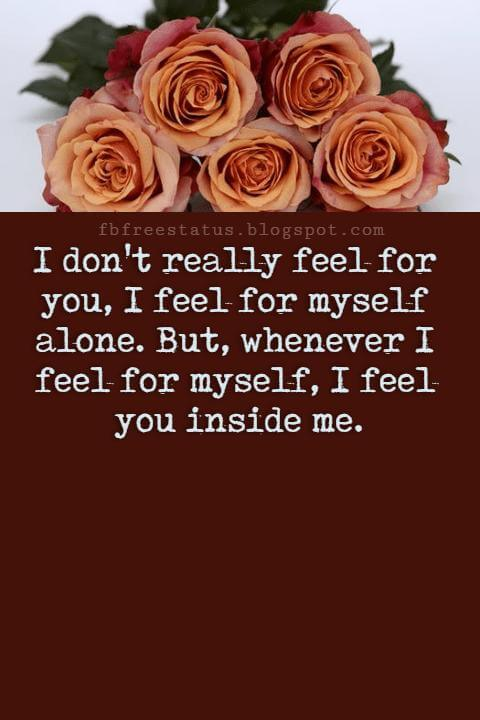 Love Text Messages, I don't really feel for you, I feel for myself alone. But, whenever I feel for myself, I feel you inside me.