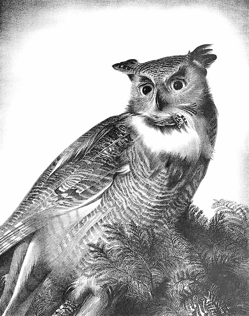 a Stow Wengenroth 1960 owl
