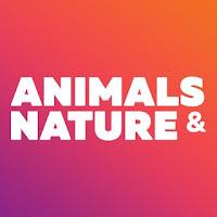 Animals & Nature - beautiful wallpapers