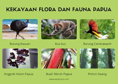 kekayaan flora fauna papua