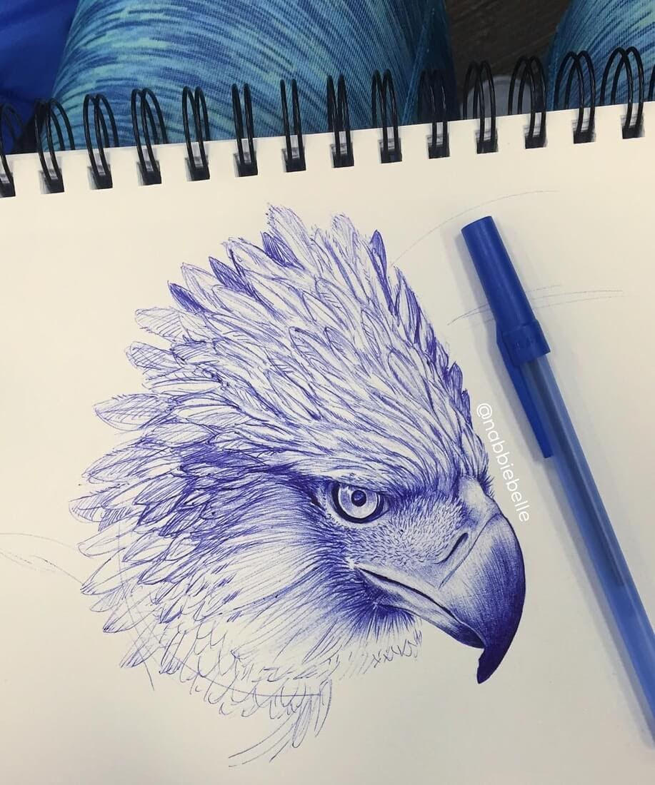 12-Philippine-Eagle-study-Annabelle-Marie-Inked-Animals-Drawn-in-Ballpoint-Pen-www-designstack-co