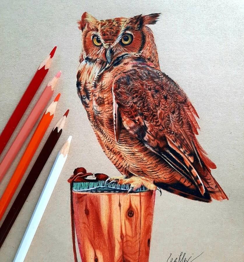 08-Owl-on-a-perch-Bele-www-designstack-co