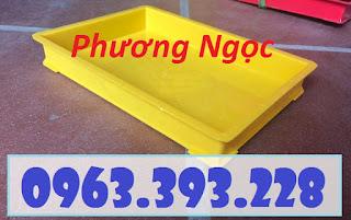 Khay nhựa đựng linh kiện, khay kích thước 300 x 208 x 42 mm, khay nhựa BL006
