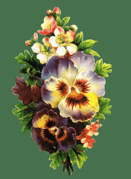 Zoom Dise 209 O Y Fotografia 31 Flores Vintage Para Scrap