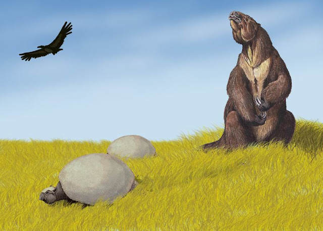 Argentavis, Glyptodon, and Megtherium on a hillside ©Dmitry Bogdanov