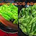 කොල පාටටම බොන්චි මාලුවක් (A Green Bean)