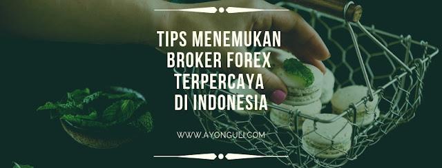 Tips Menemukan Broker Forex Terpercaya di Indonesia