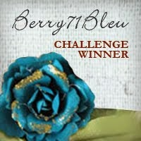 I won the Berry71Bleu challenge!