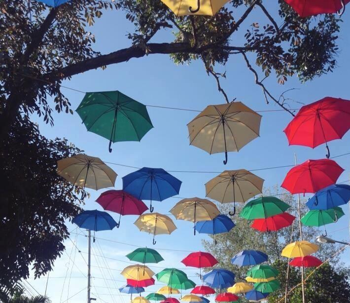 1200 colorful umbrellas in jetafe bohol the backpack man for Jardin necitas