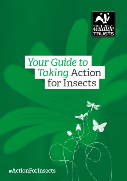 The Wildlife Trusts.Download Your Guide to Taking Action for Insects