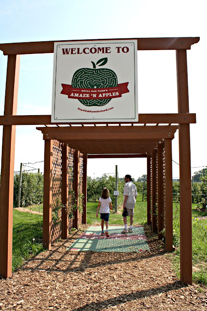 Royal Oak Farm Orchard