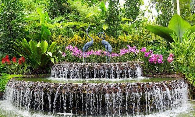 حدائق سنغافورة النباتية -  سنغافورة