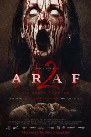 Araf 2 (2019) 300MB Full Hindi Dual Audio Movie Download 480p Web-DL