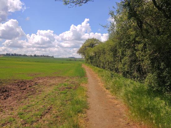 Head SW on Wymondley footpath 15 to a footpath junction
