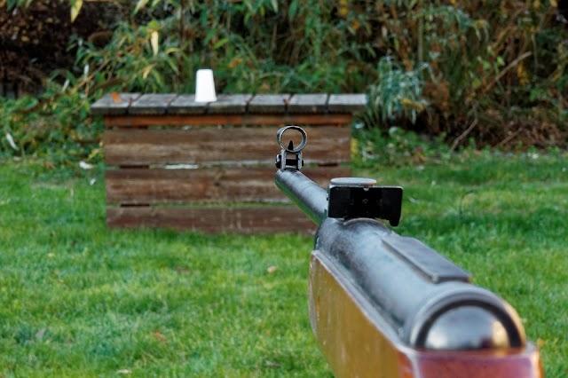 Légpuskával lőtt a kutyára Nagyszénáson egy férfi, mert az megugatta