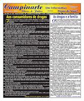 Campinarte Dicas e Fatos - Edição - 243