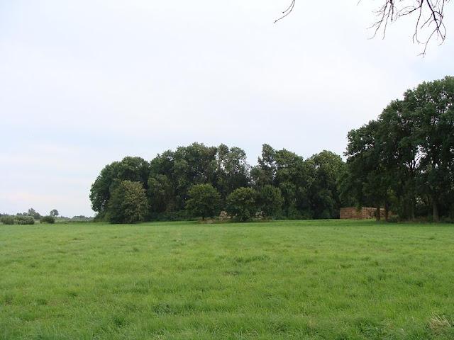 Wczesnośredniowieczne grodzisko we wsi Kołbacz