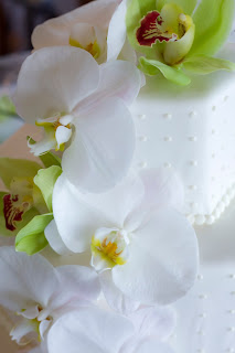 the crimson cake blog white and green orchid wedding cake