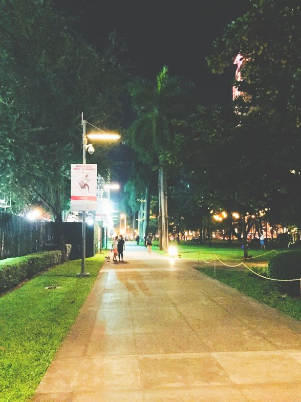 Path inside Ayala Triangle Gardens