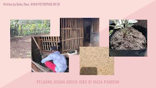 Peluang Usaha Green Jobs Di Masa Pandemi