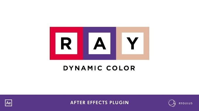 Ray Dynamic Color v2.5.9[AEScripts][After Effects][Plugin][WIN][MAC]