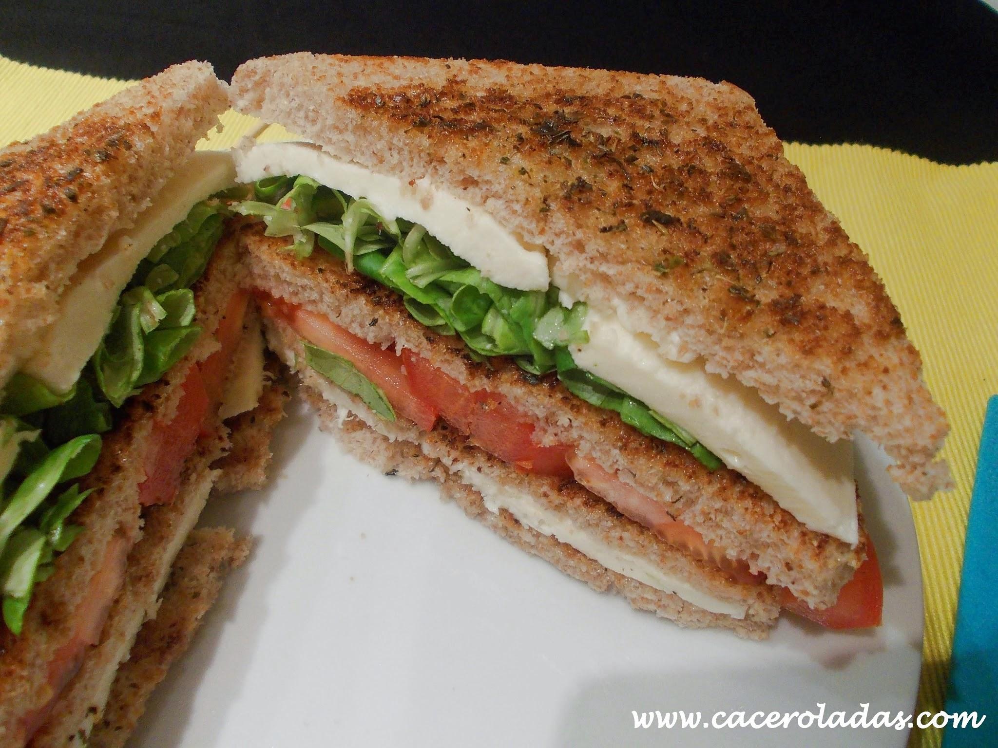 Sandwich vegetal con mozzarella