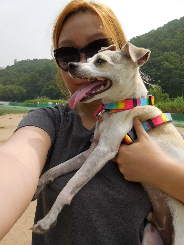 Happy Goes to Korean Dog Park!