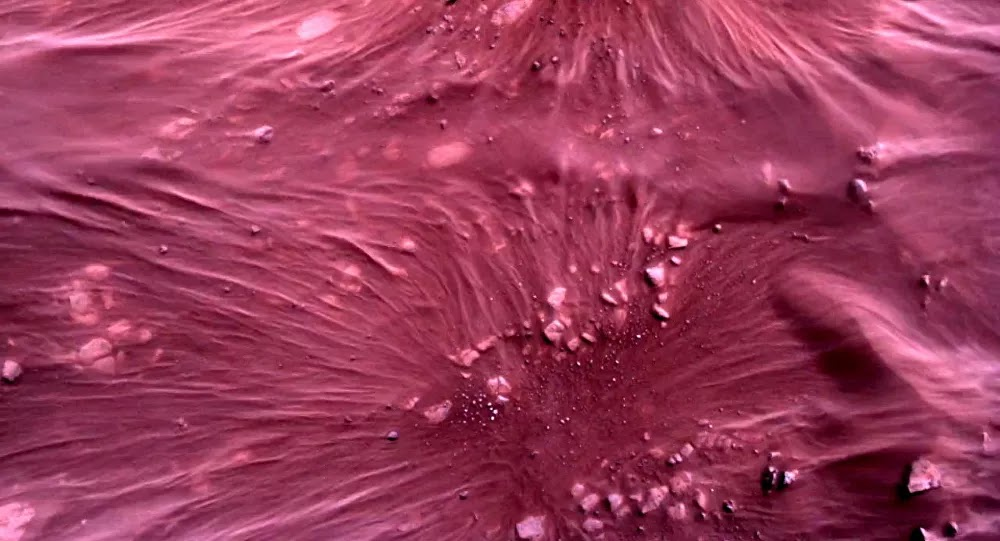 اكتشاف آثار حفر غريبة جدا على المريخ لا مثيل لها على الأرض... صور وفيديو