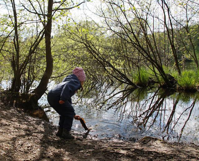 Küsten-Spaziergänge rund um Kiel, Teil 6: Der Rundweg um den Langsee. Für Kinder gibt es genug Stellen am Wasser zum Spielen und Pütschern.