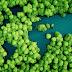 Huawei และพาร์ทเนอร์ ELEVATE ร่วมเดินหน้าฟื้นฟูสู่โลกสีเขียว สร้างระบบเศรษฐกิจและสังคมในเอเชียที่ดียิ่งขึ้น