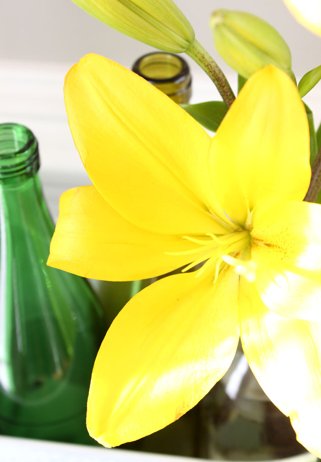 picture of a vibrant yellow lily inside a bottle