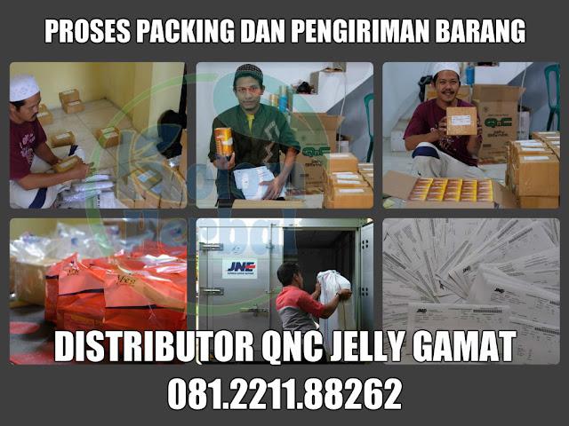 Alamat Gudang Pusat QnC Jelly Gamat