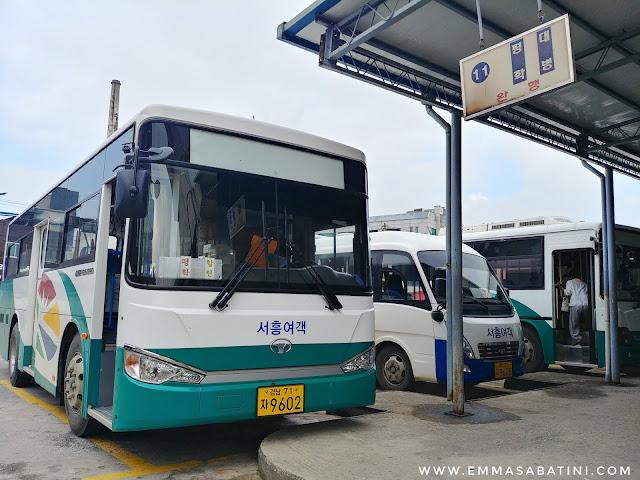 Hapcheon Movie Theme Park Bus