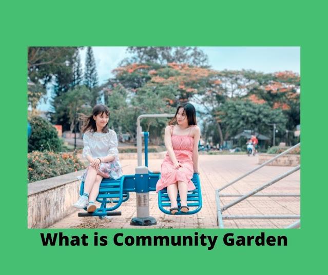 Community Garden Definition