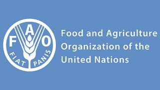 Siria-Italia: progetto Slow Food e FAO