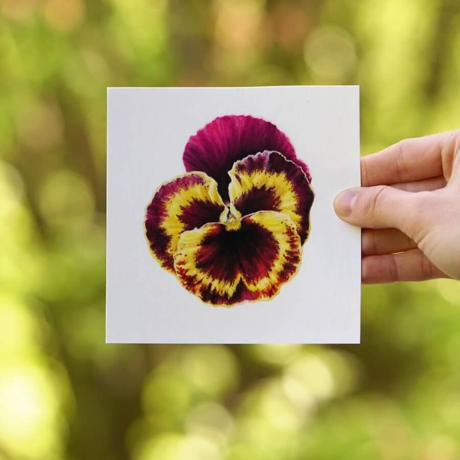 04-Yellow-Pansy-Julia-M-www-designstack-co