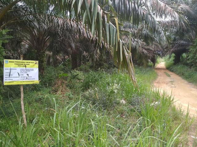 Proyek Nol Besar Menjelang Habis Kontrak di Tengah Kebun Sawit