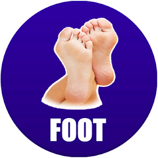foot in spanish