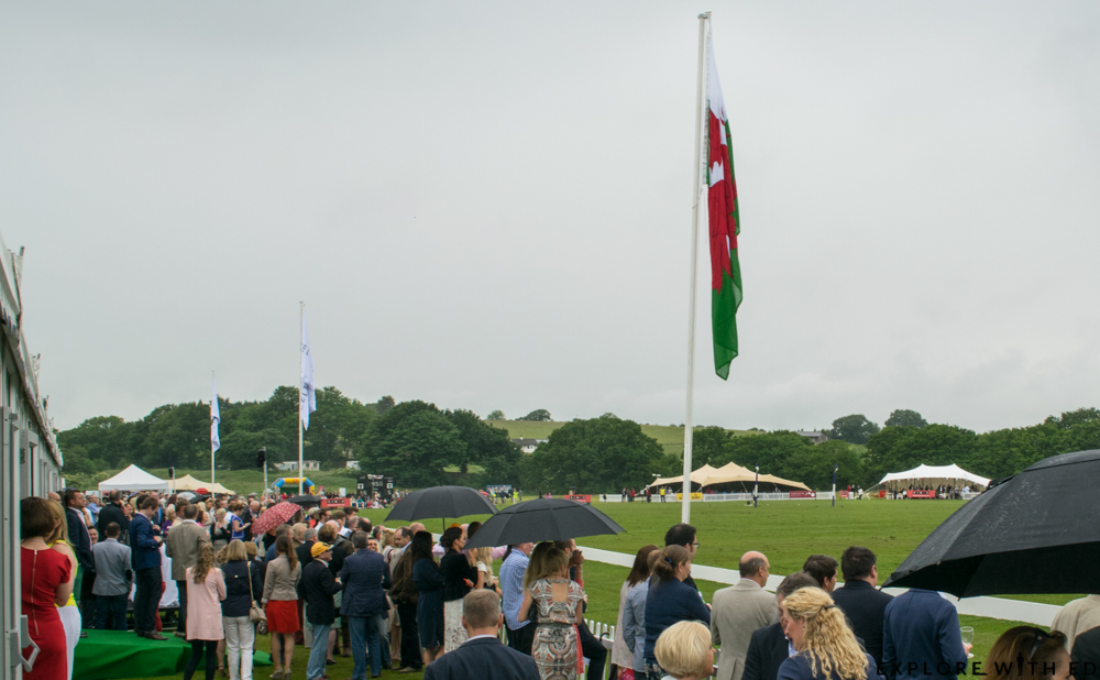 Guests watching Polo