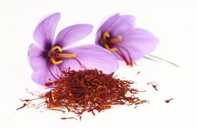 Manfaat Bunga Saffron Untuk Program Hamil