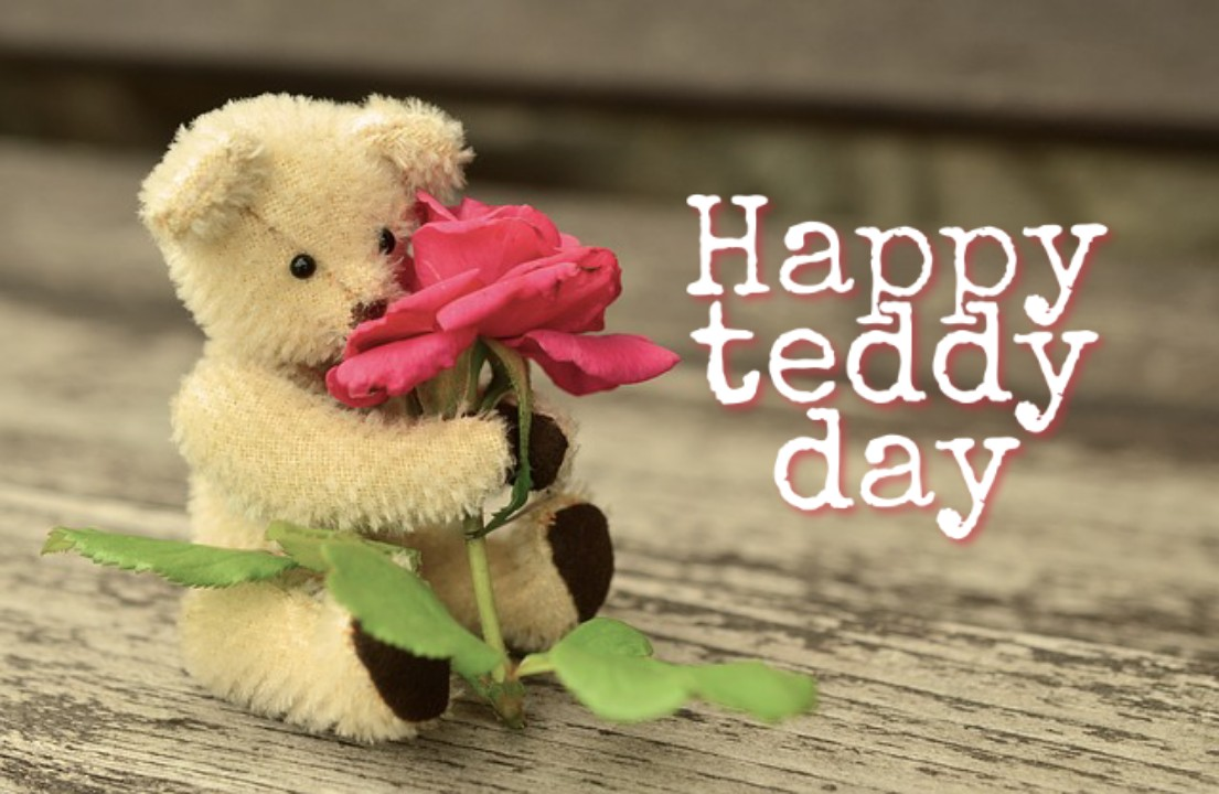 valentine week days list 2020, teddy day images