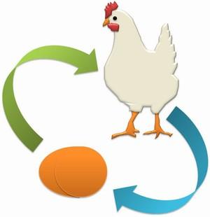 Gambar Keajaiban Dunia Sains Kitaran Hidup Ayam Animasi Gerak