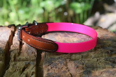 Collare in cuoio e Biothane rosa adatto a cani femmina di piccola taglia con fibbia in acciaio inox
